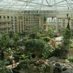 OffLeaseOnly Orlando Welcomes Gaylord Palms Resort